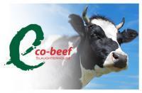 Eco-beef